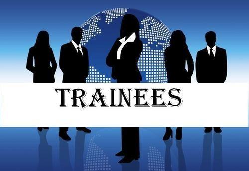 você sabe o que é um programa trainee quais as vantagens para a sua